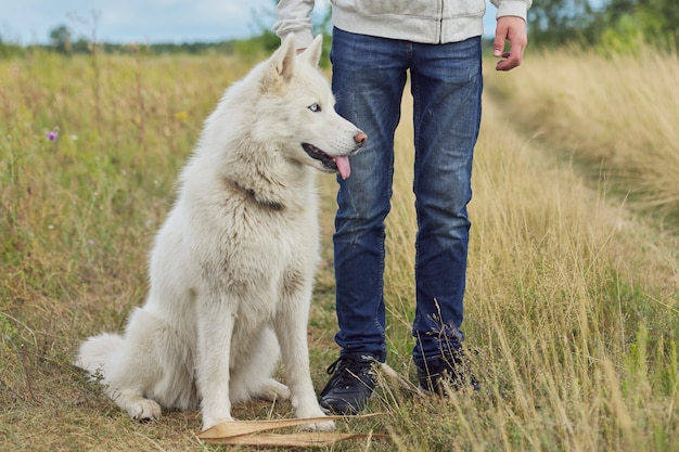Boy walking a dog on cloudy day, white husky with male in nature