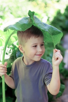 少年は雨でごぼうの葉で覆われていた