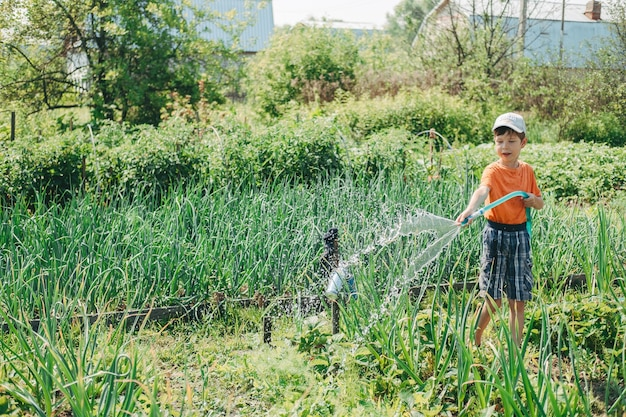 ホースで庭に水をまく少年。村の子供たちを助けます。熱で植物に水をまきます。村の祖母の夏休み。子供のための労働療法。