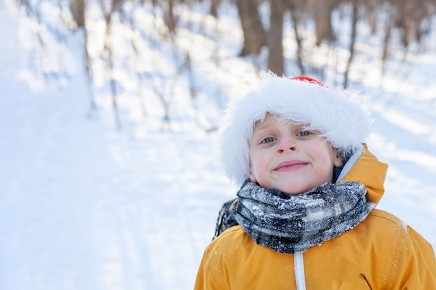 サンタクロースの帽子をかぶった少年が森の中で微笑む。子供は明けましておめでとうございます。