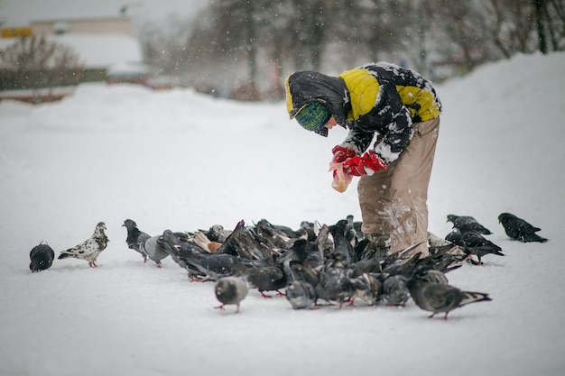 Boy in winter warm clothes feeds pigeons in city park. pigeons in snow. rescue birds in winter from hunger. care for wild animals. fun for children in winter for walk.