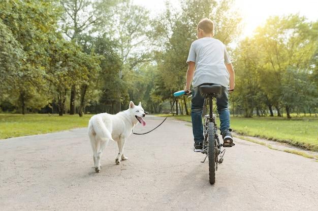 公園で自転車に乗って白いハスキー犬を持つ少年。後ろからの眺め