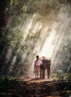 Boy with baby elephant in forest