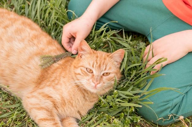 屋外の猫を持つ少年