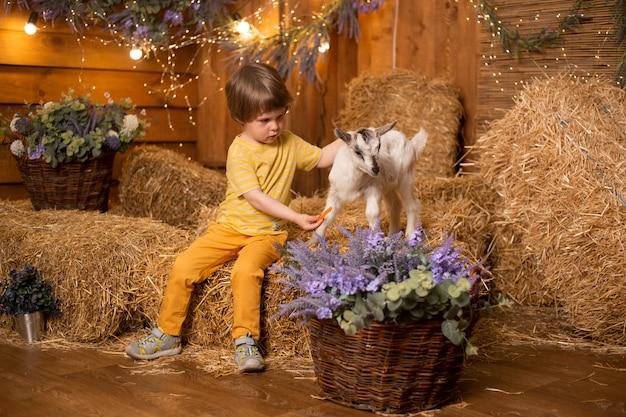 レトロなドレスを着ている干し草の背景に農場の小屋でヤギを持つ少年