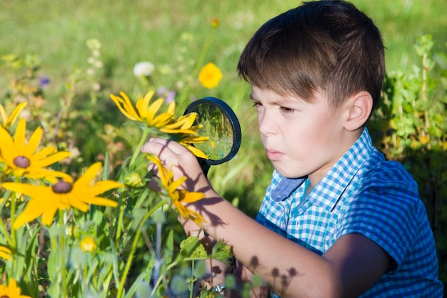 Boy with magnifying glass in summer garden