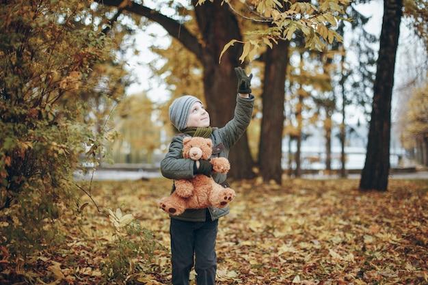 장난감을 가진 소년 무료 사진
