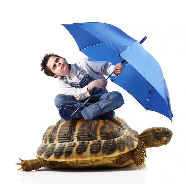 Boy with umbrella sitting on a turtle
