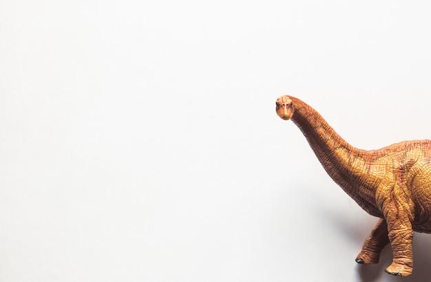 Brachiosaurus dinosaur toy isolate on white background