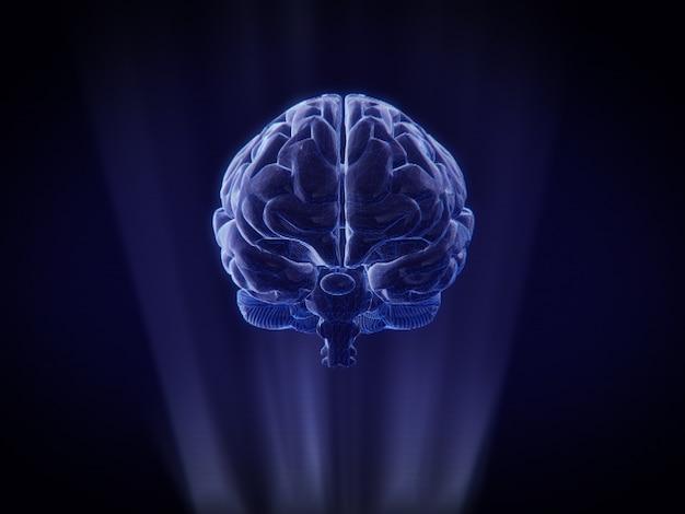 Мозг голограммы каркасный стиль.3d рендеринг