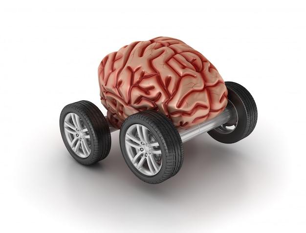 ホイール上の脳