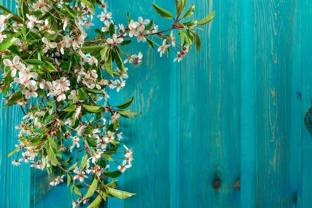 Branch of apple blossoms on a background of boards