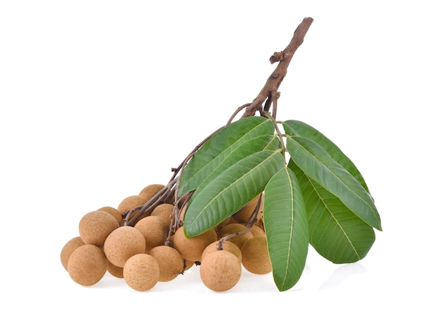Branch of fresh ripe longan with green leaf, isolated