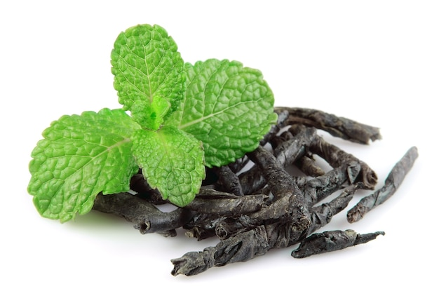 Branch mint with dried mint tea on white