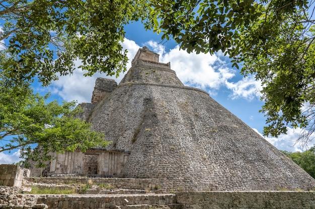 木の枝と大きな古代の建物