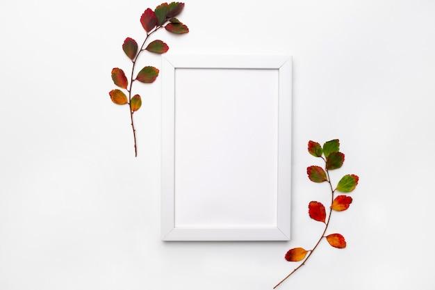 秋の枝は、白い背景で隔離を残します。平干し。季節限定のプロモーションや割引のためのコピースペース