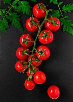 Филиал спелых красных помидоров черри на ветке с листьями