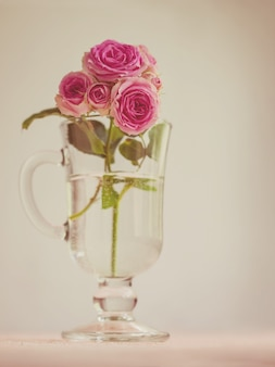 A branch of roses in a glass, vintage style,