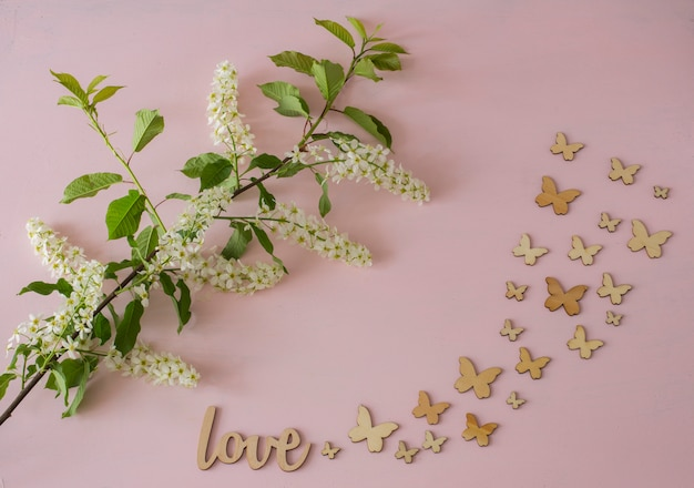Branch of white bird cherry and butterflys on a pink background
