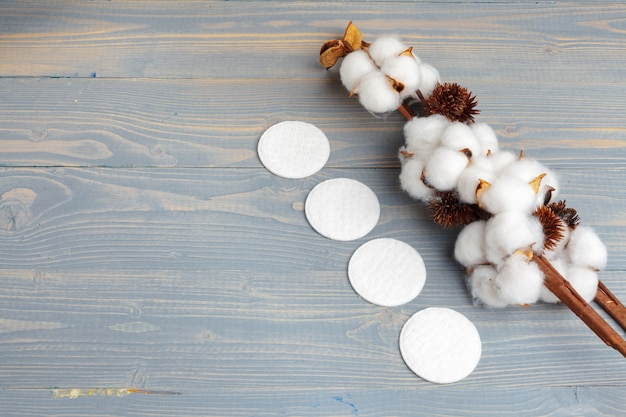 Branch with cotton flowers on wooden background