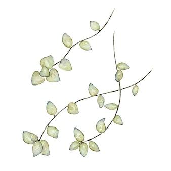 白に描かれた緑の葉の水彩画とブランチ