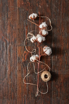 Branch with soft white cotton flowers and a ball of yarn