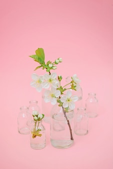 Branch with white blossom in glass bottle
