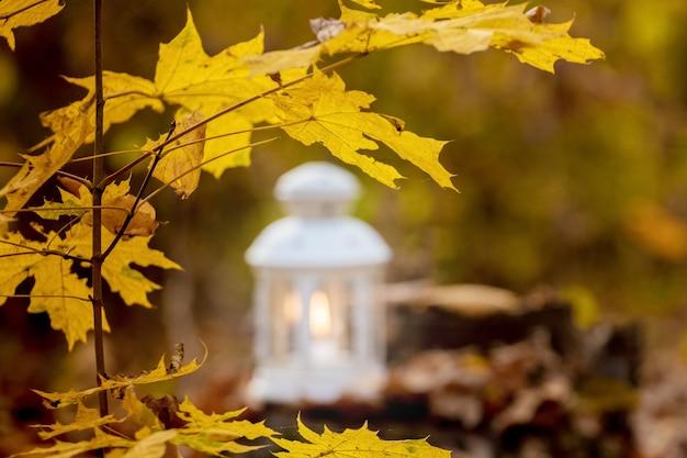 Ветка с желтыми кленовыми листьями возле фонаря со свечой в осеннем лесу Premium Фотографии