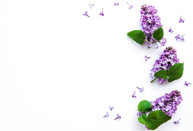Ветки и цветы сирени на белом фоне, топ вьев, плоская планировка, копия места на пасху, день матери, женский день