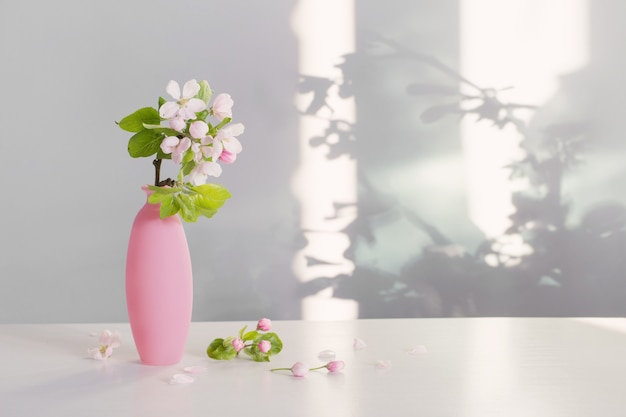 Branches of  apple tree with flowers in pink vase on white table