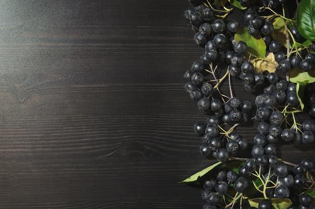 Branches black chokeberry berries ( aronia melanocarpa ) on dark table background