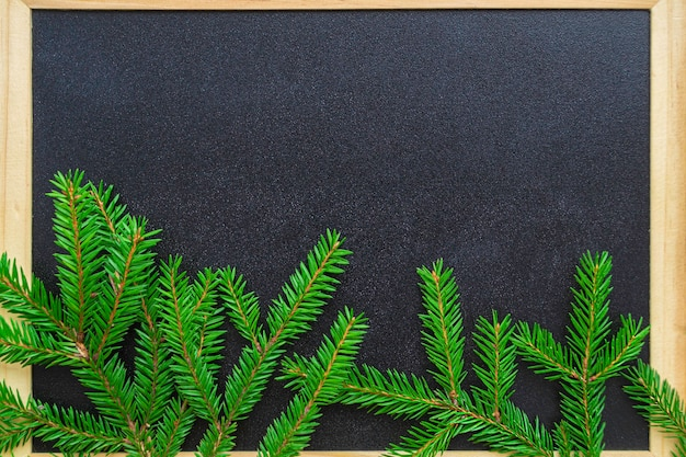 Branches of christmas tree from below against a black board with a wooden frame.