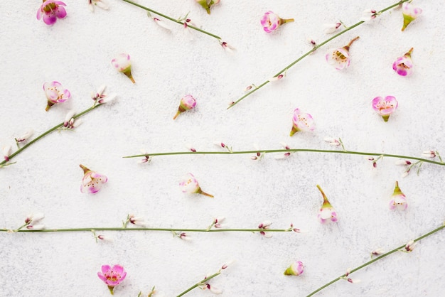 Branches of flowers on table