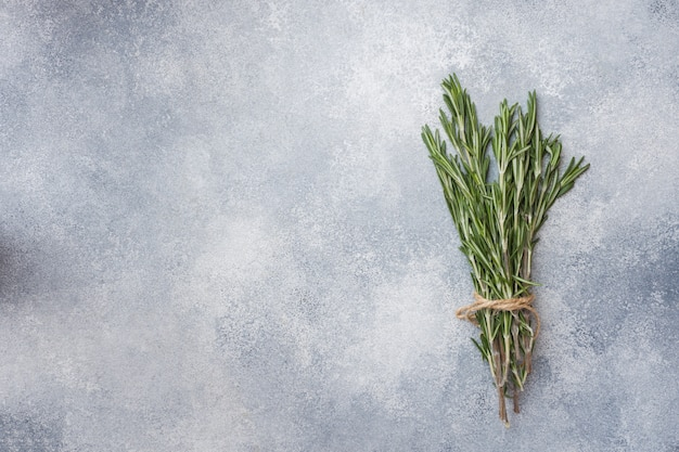 Branches of fresh rosemary on a gray concrete surface. copy space.