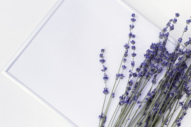 Branches of lavender and photo frame