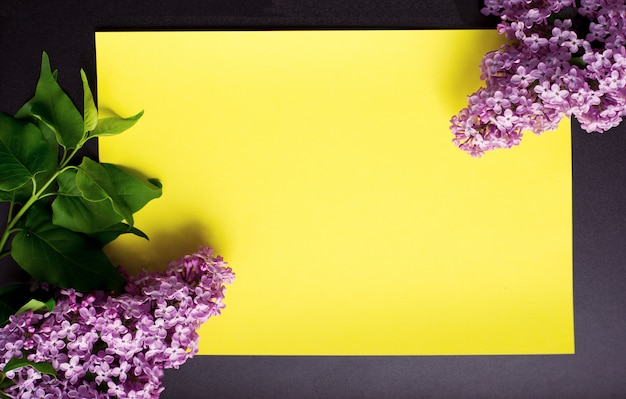 Branches of lilac on a yellow background