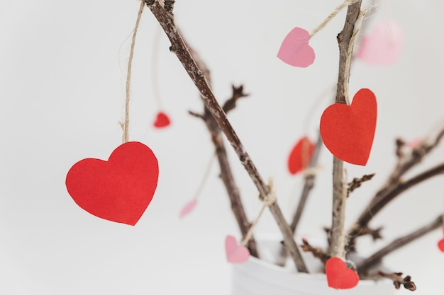 Branches of a plant in a white pot with hearts hanging from close up