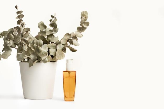 Ветки с листьями эвкалипта и бутылка эфирного масла на белом фоне