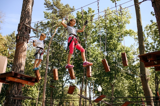 装備を身につけた勇敢な子供たちは、ロープパークや遊び場に登ります。吊橋に登る子供たち