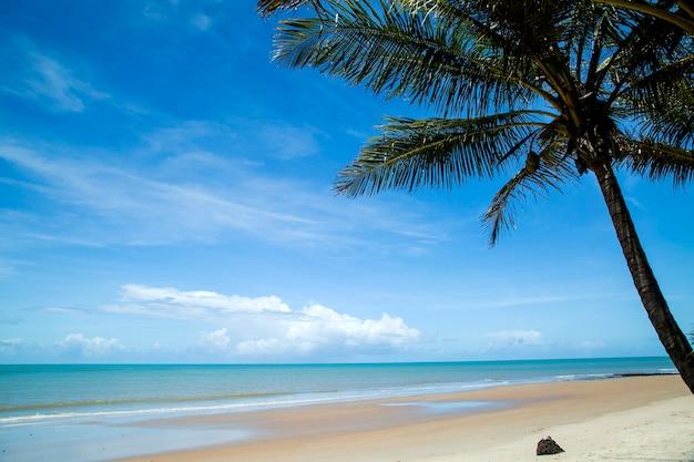 Бразильское побережье пляжа в солнечный день в барра-ду-кахи, баия, бразилия. февраль, 2017.
