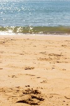 ブラジルのビーチコースト。砂と海の背景。