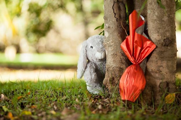 ブラジルのイースターエッグ、木の下で赤い紙に包まれ、壁にウサギがいる