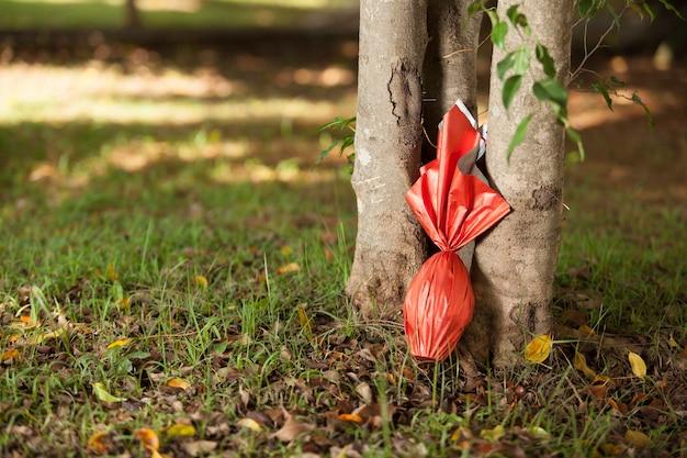 Uovo di pasqua brasiliana, avvolto in carta rossa sotto un albero