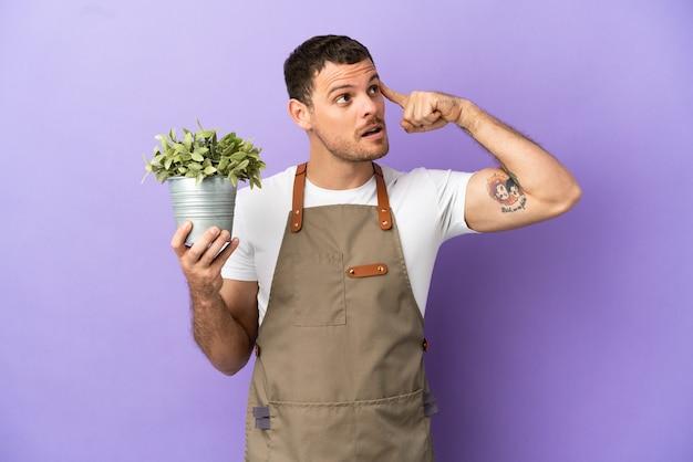疑いと思考を持っている孤立した紫色の背景の上に植物を保持しているブラジルの庭師の男