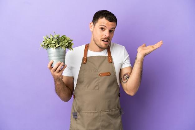 Бразильский садовник, держащий растение на изолированном фиолетовом фоне, сомневается, поднимая руки