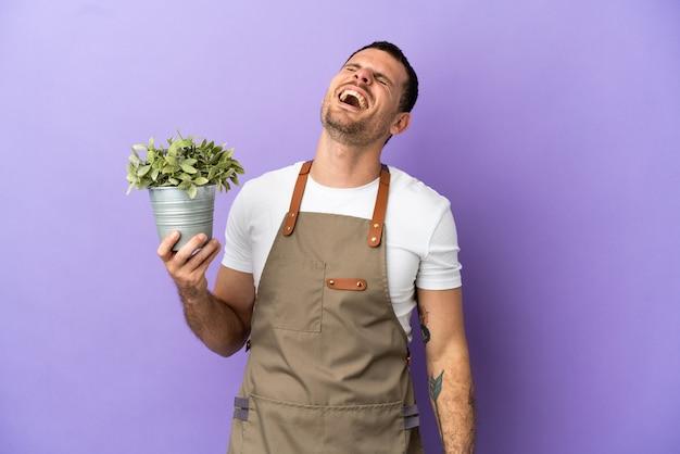 Бразильский садовник, держащий растение на изолированном фиолетовом фоне, смеясь