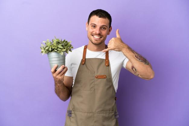 Бразильский садовник мужчина держит растение на изолированном фиолетовом фоне, делая телефонный жест. перезвони мне знак