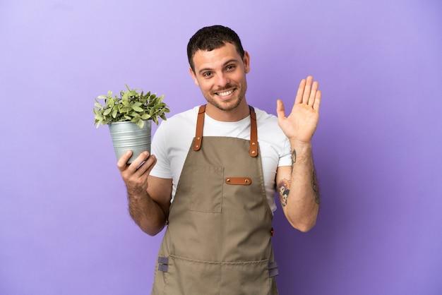 고립된 보라색 배경 위에 식물을 들고 행복한 표정으로 손으로 경례하는 브라질 정원사