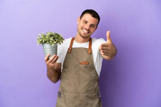 격리된 보라색 배경 위에 식물을 들고 있는 브라질 정원사 남자는 좋은 거래를 성사시키기 위해 악수를 합니다.