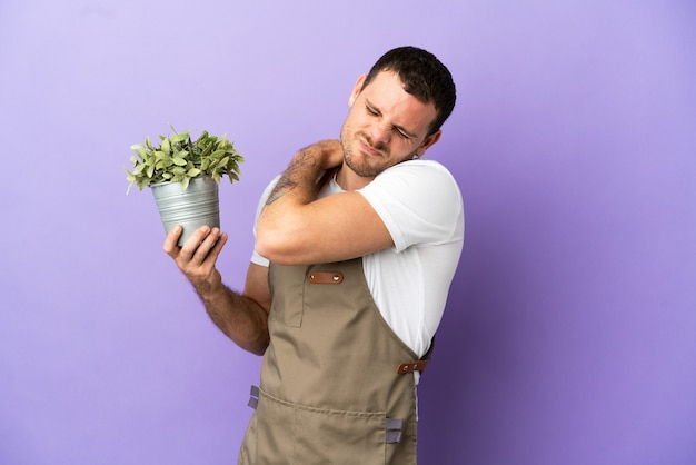 Brazilian gardener man holding a plant over isolated purple background suffering from pain in shoulder for having made an effort